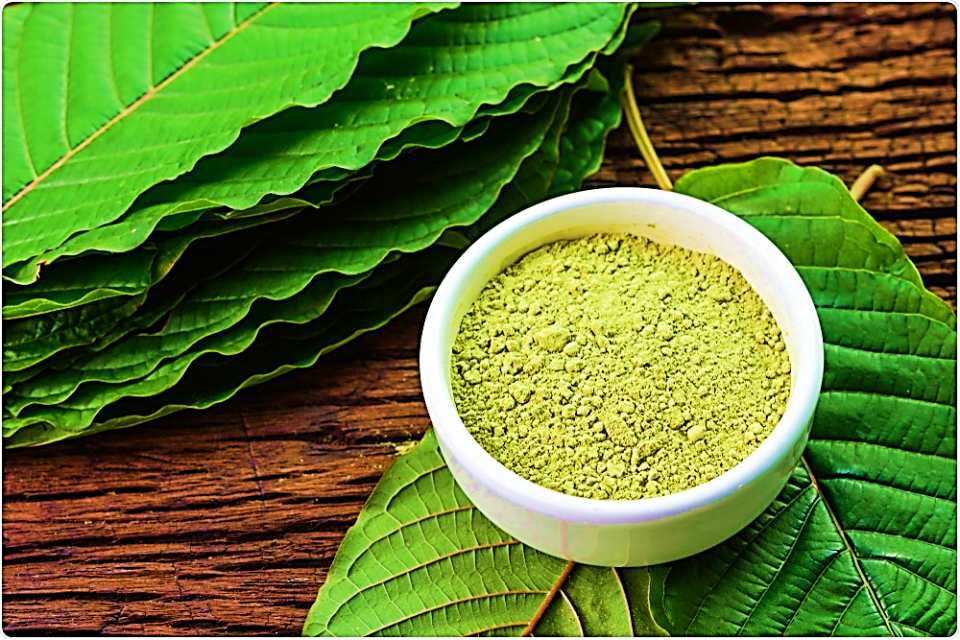 Take Guide about Kratom
