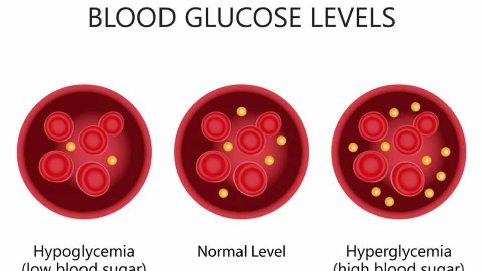 Normal Blood Glucose Levels