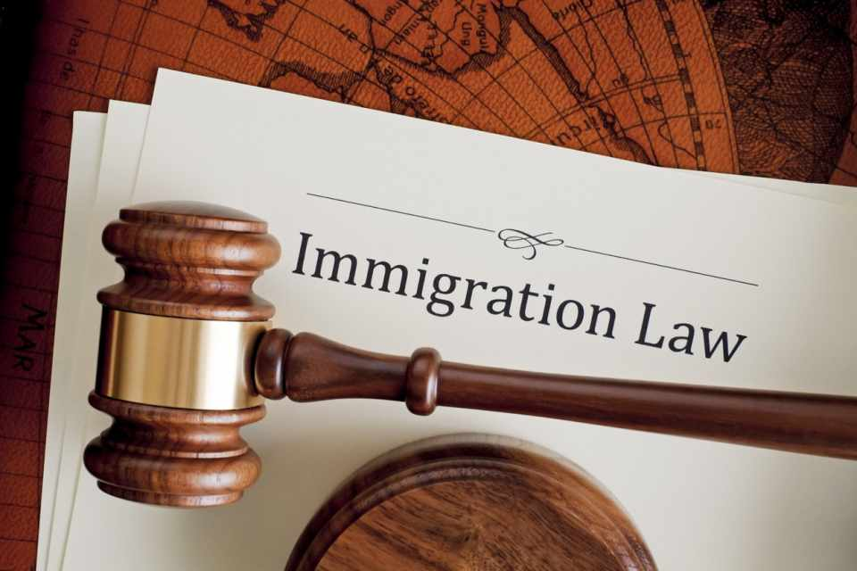 Study Immigration Law